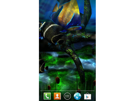 Mi Fish 3D II